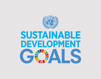 SDG Monitoring and Reporting Toolkit for UN Country Teams