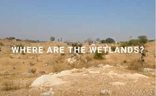 Where are the Wetlands
