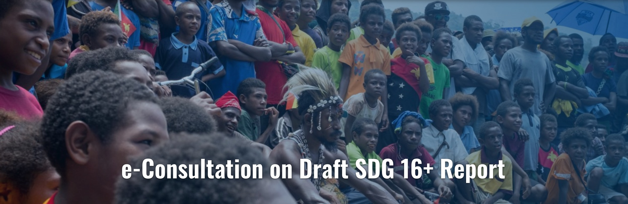 e-Consultation on priority areas for action from the draft SDG 16+ Report now open!