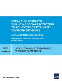 Fiscal Challenges to Financing Social Protection to Achieve the Sustainable Development Goals: A Case of Three Countries