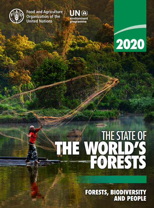 State of the World's Forest