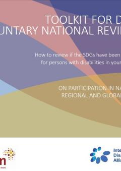 Engagement of Organisations of Persons with Disabilities (DPO) in the VNR Process