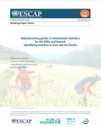 Mainstreaming gender in environment statistics for the SDGs and beyond: Identifying priorities in Asia and the Pacific