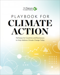 Playbook for Climate Action