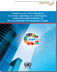 Guidance on core indicators for entity reporting on contribution towards implementation of the Sustainable Development Goals