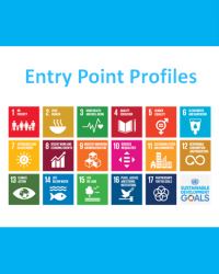 Asia-Pacific: SDG Entry Point Profiles