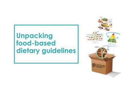 FAO Webinar Recording: Unpacking food-based dietary guidelines