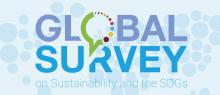 Global Survey on Sustainability and the SDGs
