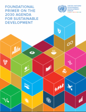 Foundational Primer on the 2030 Agenda for Sustainable Development