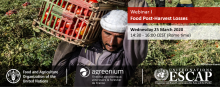 First technical webinar - Sustainable Food Systems and Nutrition: Food post-harvest losses